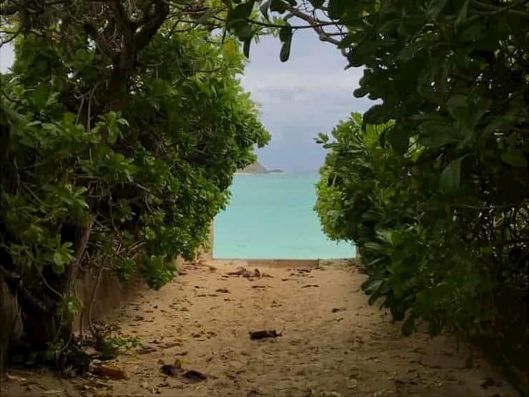 ラニカイビーチに続くパブリックロード