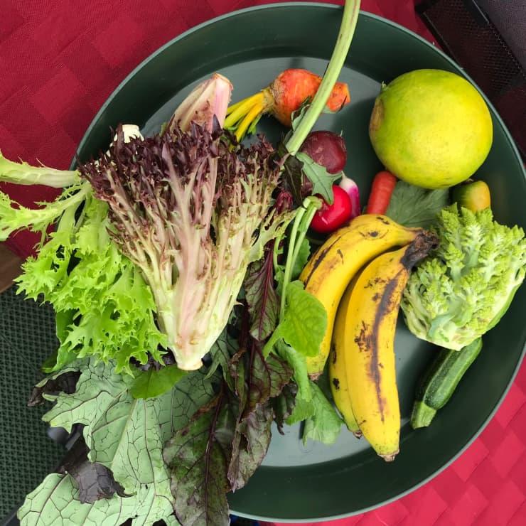 ワイメアファーマーズマーケット野菜