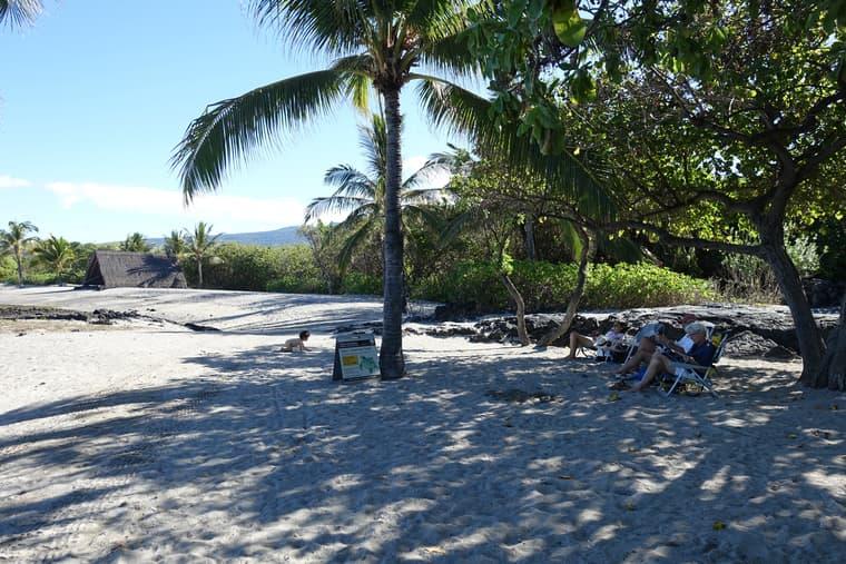 ハーバーのビーチはロコが静かに海を楽しむ場所