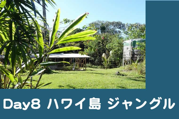 ハワイ子連れブログ8日目