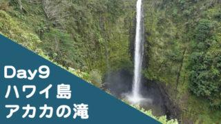 ハワイ子連れブログ2019年9日目
